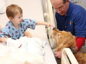 pet therapy dog rosie cheers up a patient
