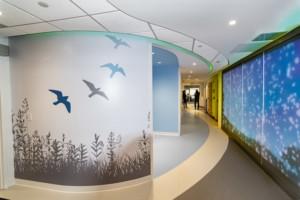 interactive wall at dialysis center