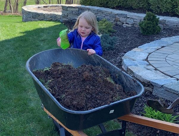 Dr. Ayr-Volta's daughter completes yard work.